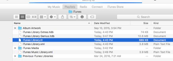 Screenshot of the iTunes Music Library Folder