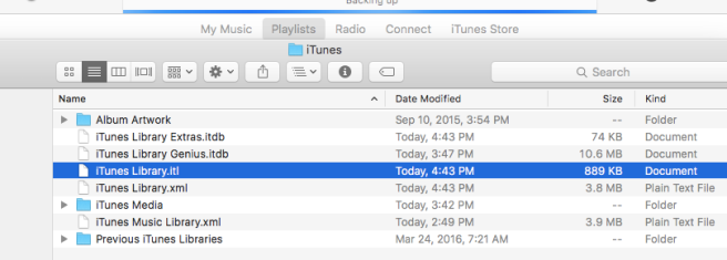Screenshot of the iTunes Music Library Folder